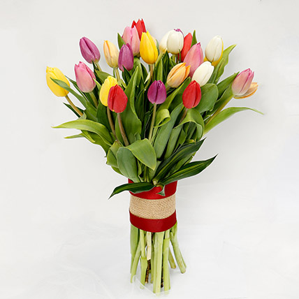 25 Mixed Tulip Bunch: Gifts for Karwa Chauth