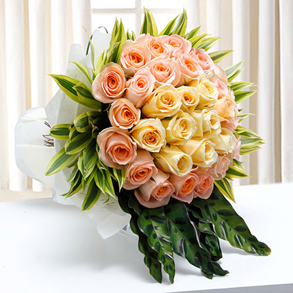 Morning Accolade:  Rose Delivery in Saudi Arabia