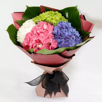 Beautiful 4 Colour Hydrangea Bouquet: Exotic Flowers