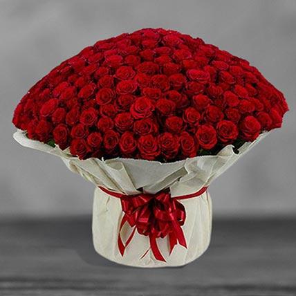 300 Red Roses Arrangement: Basket Arrangements