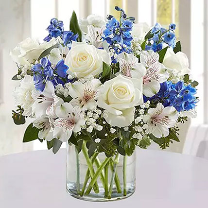 White Rays With Blue Line: Flowers Delivery