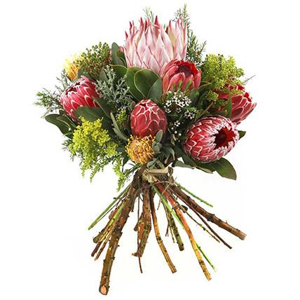Elegant King Protia With Cordiflum Flower Bunch