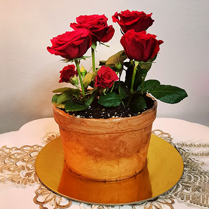 Chocolate Cake With 6 Red Roses- Half Kg