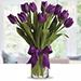 Purple Tulip Arrangement